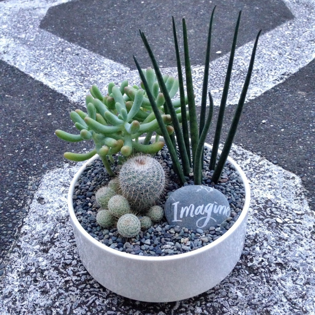 A pretty succulent dish garden, with a painted stone accent.
